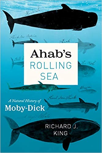 Ahab's Rolling Sea book cover